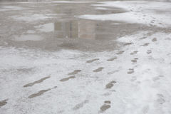 Puddles and slushy snow with footprints. Royalty Free Stock Images
