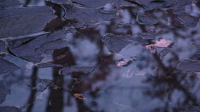 Puddles on the Stone Pavement stock footage