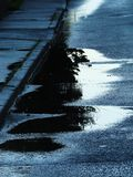 Puddles on the Street Royalty Free Stock Photo