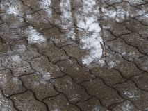 Puddles on the tile path. drizzle light rain.  royalty free stock images