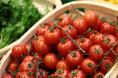 Pudełka czereśniowi pomidory pietruszka i koper fotografia stock