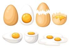 pudełko łamający kurczaka jajka wśrodku yolk Piec, gotujący się, surowy, pokrojony, krakingowy jajko set, pojedynczy białe tło royalty ilustracja