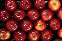 Pudełko świezi jabłka obrazy royalty free
