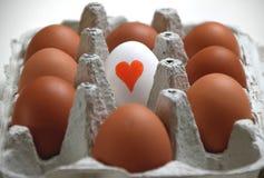 Pudełko jajka dla jajecznych kochanków zdjęcie royalty free
