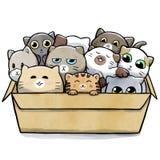 Pudełko pełno koty ścieśniający wpólnie ilustracja wektor