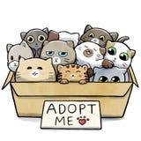 Pudełko pełno koty dla adopci ilustracja wektor