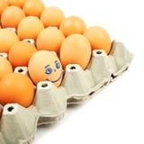 Pudełko z jajkami Obrazy Royalty Free