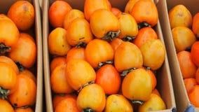 pudełkowaci persimmons Zdjęcia Stock