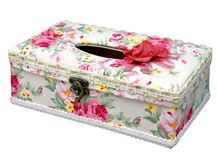 pudełkowata elegancka odosobniona tkanka Obraz Stock