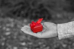 pudełkowata prezenta mienia czerwieni kobieta zdjęcie royalty free