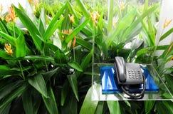 pudełkowatego hotelu domu plenerowy telefon obraz royalty free
