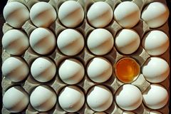 Pudełko biali skorup jajka z otwarty jeden Zdjęcie Stock