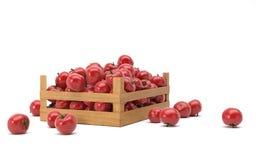pudełko z pomidorami Zdjęcia Royalty Free
