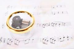 pudełkowata muzyka Obraz Royalty Free