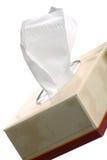 pudełkowata tkanki Obrazy Royalty Free