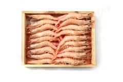 pudełkowate krewetki Zdjęcie Stock