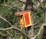 pudełkowaty kolorowy target2229_0_ Zdjęcia Stock