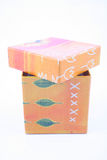 pudełkowata pomarańcze Zdjęcia Stock