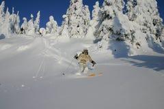 Puder-Skifahren Lizenzfreies Stockbild