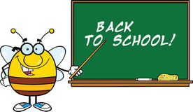 Pudgy Bee Cartoon Character With Glasses With A Pointer In Front Of Blackboard Stock Images