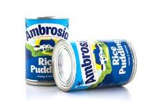 Pudim de arroz do ambrosia Foto de Stock
