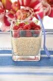 Pudim de arroz do leite do Quinoa fotos de stock royalty free