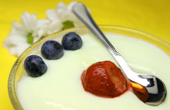 Pudim delicioso com uva-do-monte fotografia de stock