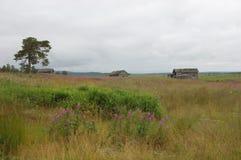 Pueblo abandonado en Kola Peninsula, Rusia Fotos de archivo libres de regalías