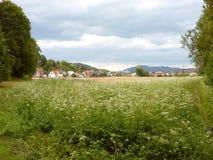 Pueblo al lado de un campo verde Fotos de archivo libres de regalías