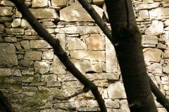 Pueblo arruinado viejo en Eslovenia Foto de archivo