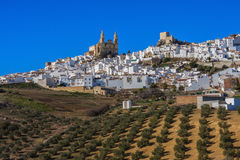 The Pueblo Blanco of Olvera, Spain. Royalty Free Stock Image