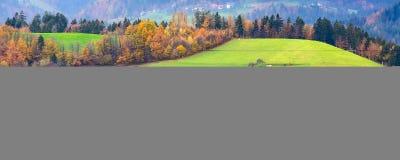 Pueblo, bosque del otoño y prados de la montaña imagen de archivo