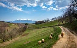 Pueblo cárpato en el mountainof Transilvania, Rumania fotos de archivo libres de regalías