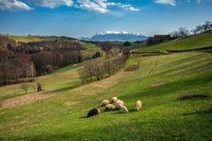 Pueblo cárpato en el mountainof Transilvania, Rumania fotos de archivo