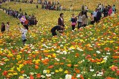 Pueblo chino de la excursión de la primavera Foto de archivo