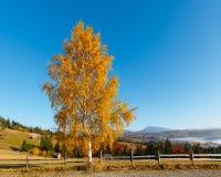 Pueblo de Autumn Carpathian, Ucrania Fotografía de archivo libre de regalías