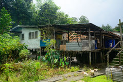 Pueblo de Bidayuh, Annah Rais, Borneo, Malasia Imagen de archivo libre de regalías