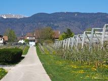 Pueblo de Grens, Suiza Imagen de archivo libre de regalías