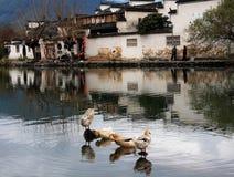 Pueblo de Hong, ciudad de Huangshan, Anhui, China Foto de archivo