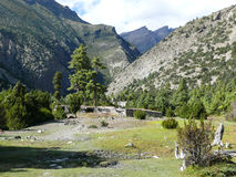 Pueblo de Julu y bosque del pino cerca de Ngawal, Nepal Imagenes de archivo
