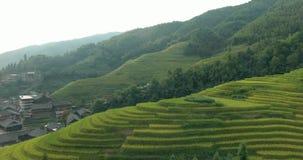 Pueblo de Longsheng y campo colgante del arroz almacen de metraje de vídeo