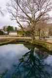 Pueblo de Oshino Hakkai con la charca de agua en Yamanashi Japón Imagen de archivo libre de regalías
