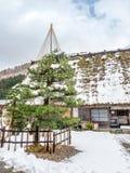 Pueblo de Shirakawa y pino verde en Gifu, Japón fotografía de archivo