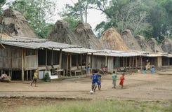 Pueblo de Wogo, isla de Flores Fotografía de archivo libre de regalías