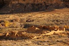 Pueblo Del Arroyo Photos stock