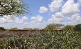 Pueblo del Masai en Kenia Foto de archivo