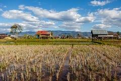 Pueblo en arroz de arroz cerca del lago Inle imagenes de archivo