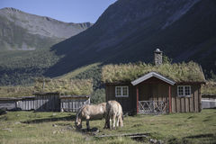 Pueblo en la montaña, la granja de Herdal, Noruega Fotografía de archivo