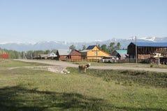 Pueblo en las montañas de Rusia Fotografía de archivo