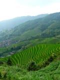 Pueblo en los campos del arroz Foto de archivo libre de regalías